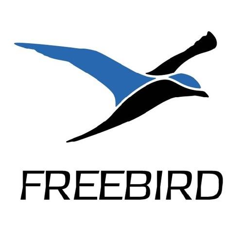 FreeBird - Idiom (clip)