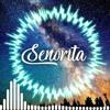 SENORITA~SKA version_Reggae Cover - Masterkiu