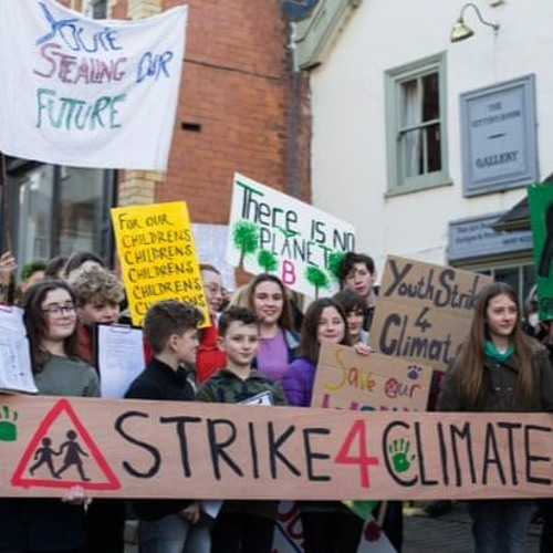 Reflections on Climate strikes