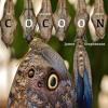 Cocoon - for chamber septet