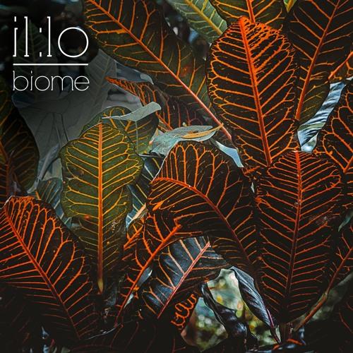il:lo - Biome