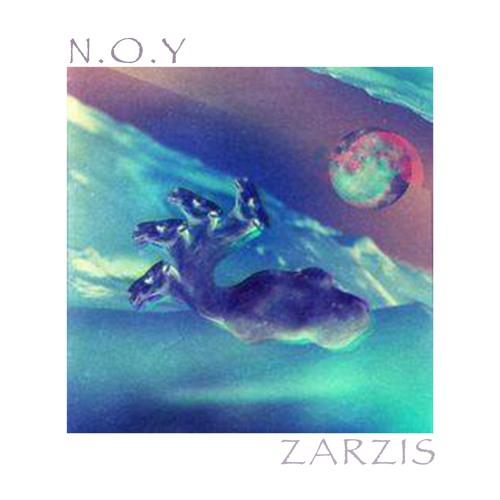 N.O.Y - Zarzis (Freudenthal Remix)