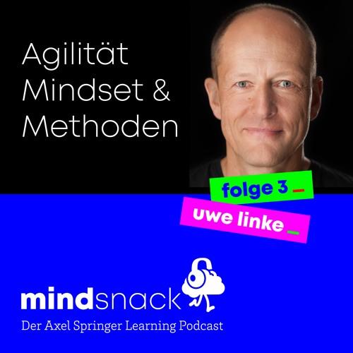 #3 - Uwe Linke: Agilität Mindset & Methoden