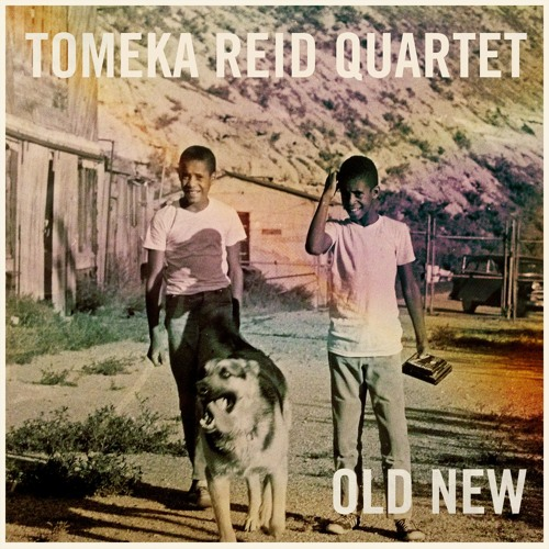 "Tomeka Reid Quartet ""Old New"" from ""Old New"" (Cuneiform Records)"
