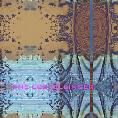 DOG BEACH #22 (acoustic version) - The Le$ Dillinger