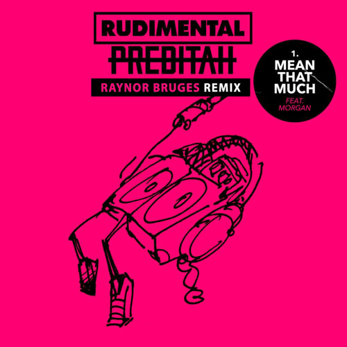 Rudimental & Preditah - Mean That Much (Raynor Bruges Remix)