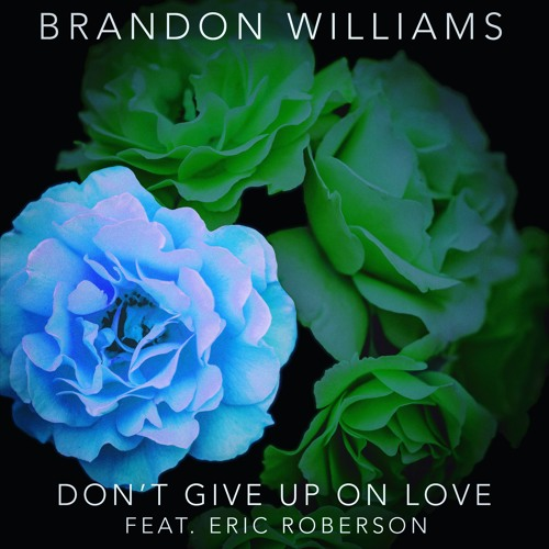 Dont Give Up On Love (feat. Eric Roberson)