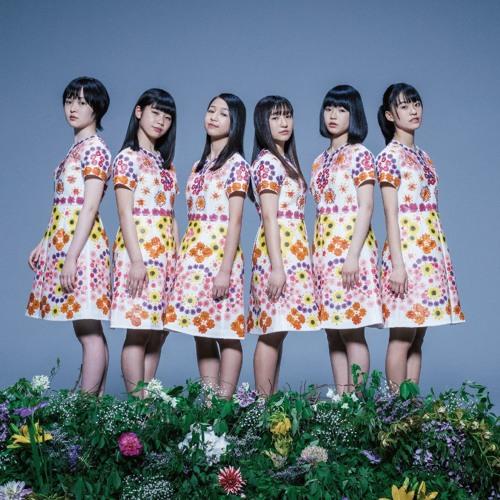 開歌-かいか-「ゆびさきに向日葵」 caeca / Yubisakini Himawari