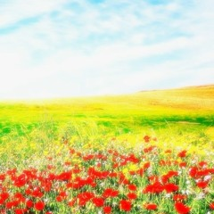 Shako-Pani - Flowery Path(Amebre Kizami Bootleg)