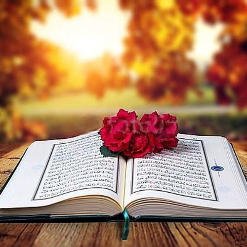 Most Beautiful and pleasing recitation of Quran Surah Al Najam by ...