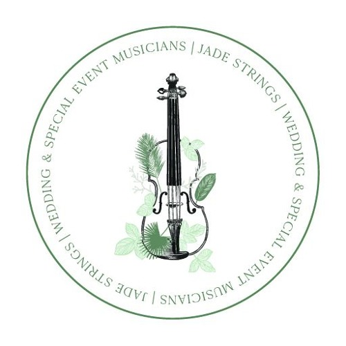 Vivr Mi Vida - E. Violin Cover