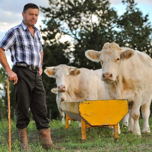 Agrar-Atlas: Wie eine gemeinsame Agrarpolitik aussehen sollte (3/3)