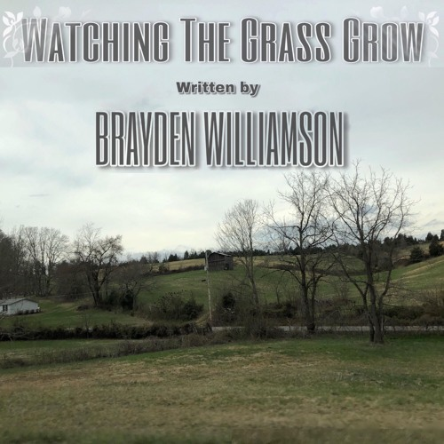 Brayden Williamson - Watching The Grass Grow (single)