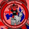 Download The Fantha From Down Under Episode 33: Chatting Star Wars with Eric Onkenhout Part Two Mp3