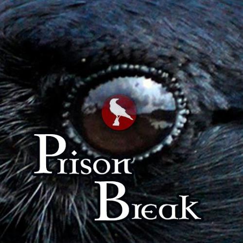 Sin of a Crow - Prison Break (Preview)