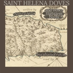 Saint Helena Doves And Other Flightless Birds