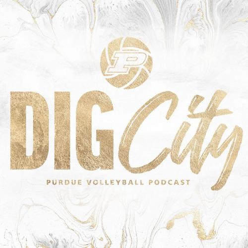 Dig City   Season 1, Episode 1 (8/5/19)