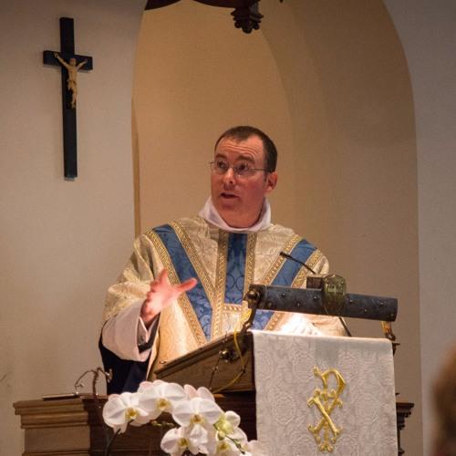 Fr Matt Gun-Violence Prayer Vigil Sermon