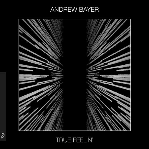 Andrew Bayer True Feelin