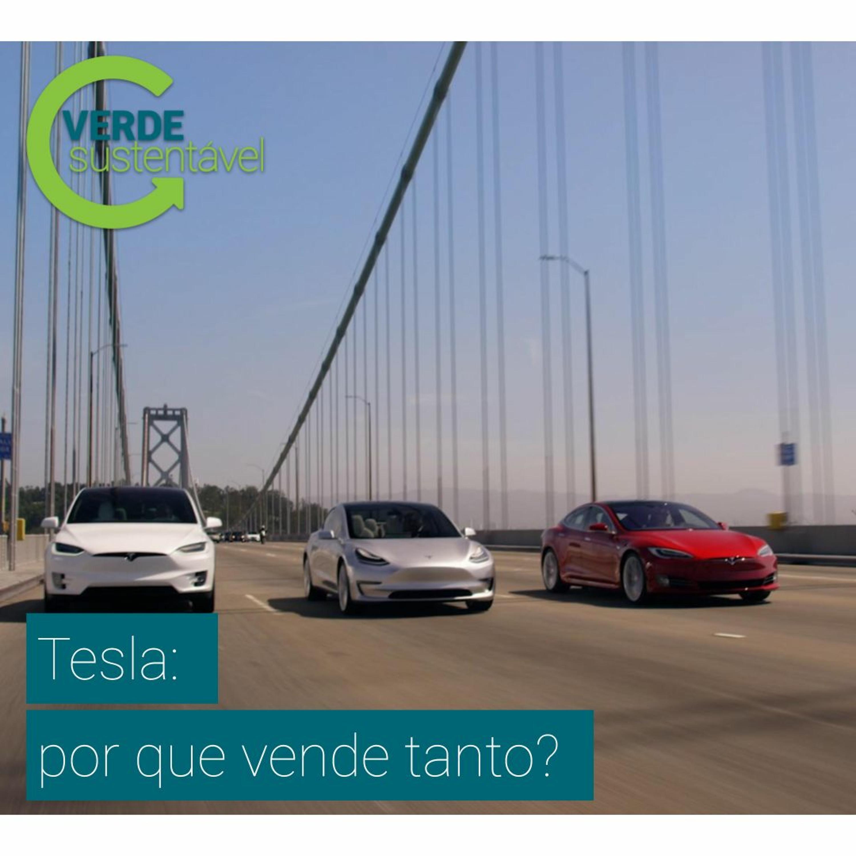 05 - Porque Vende Tanto A Tesla?