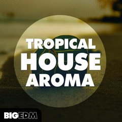 SAMPLE PACK: 300+ Kygo Style Melodies & Presets | Tropical House Aroma