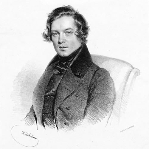 Fantasiestücke Op 73 - 3rd - Schumann.