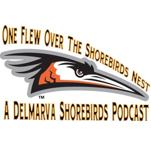 One Flew Over the Shorebirds Nest - Ep. 11, RHP Adam Stauffer