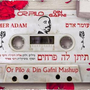עומר אדם - תיתן לה פרחים (Or Pilo & Din Gafni Power Mashup) mp3