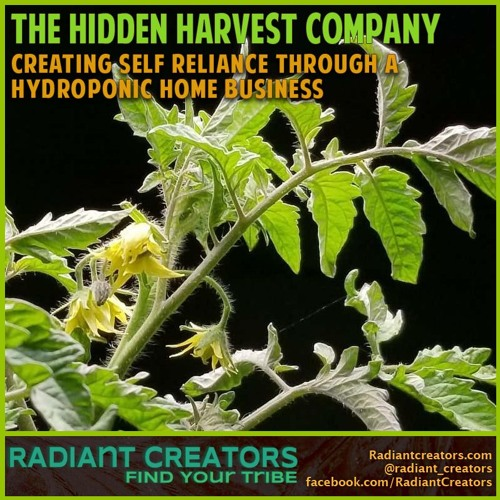 The Hidden Harvest Company - Creating Self Reliance Through A Hydroponic Home Business