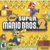 New Super Mario Bros. 2-Lava Underground