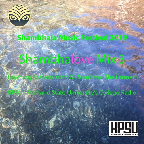 Shambhalove Mix 2019 - Best Love Songs of Shambhala Music Festival
