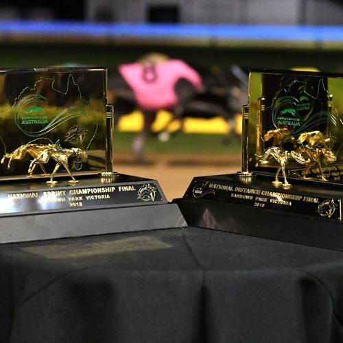 Sandown Dogcast | 2019 National State finals