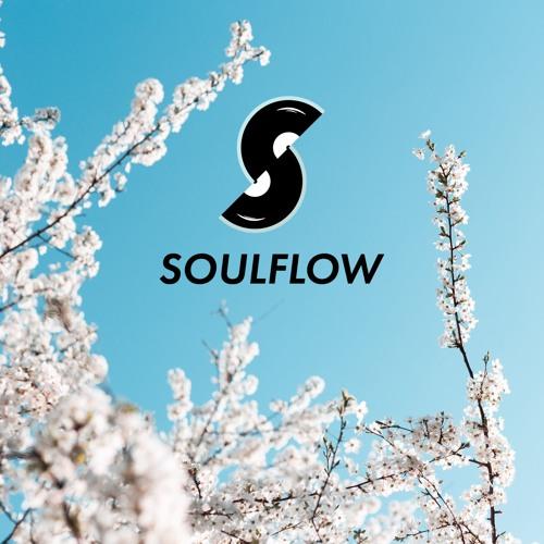 Soulflow b2b Session