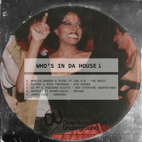 Various Artists - Who's in Da House ?
