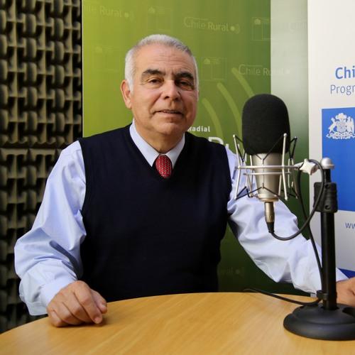 Chile Rural: Entrevista a Alfonso Vargas, subsecretario de Agricultura