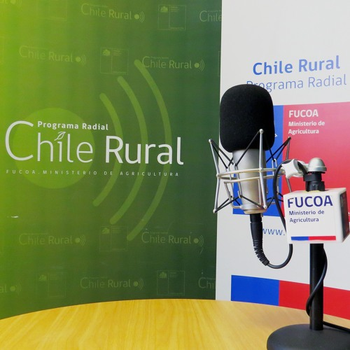 Chile Rural: Programa completo N° 32