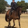 578: Rena Figueredo LC - Horses Are a Wonderful Therapy For People Who Live a Stressful Life (Listeners' Choice)