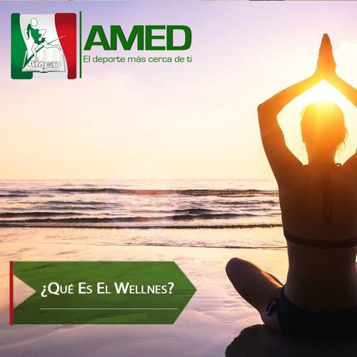 Podcast 333 AMED -  ¿Qué Es El Wellnes?