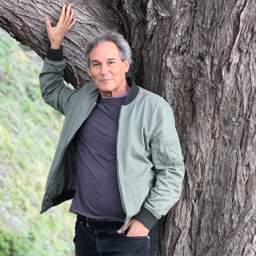 Psychedelic Integration, Pt. 6: Cannabis Panel, featuring Martin Lee of Project CBD, and more