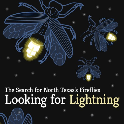 Looking For Lightning - Radio Race 2019 Submission
