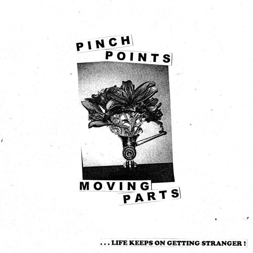 Pinch Points - Stainless Steel