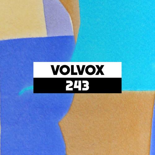 Dekmantel Podcast 243 - Volvox