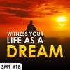 Download #18 Witness your life as a dream (Jio Supna, Nis Din Maya & Jaise Jal Te) - Salok M9 English Katha Mp3