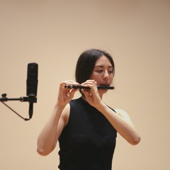 here (5): a hyperdocumentation, for flute and fixed media [Sara Constant]