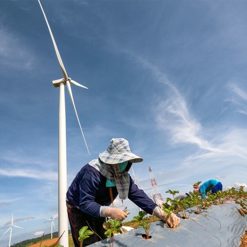 Spillover taxes could help boost green energy projects in Asia