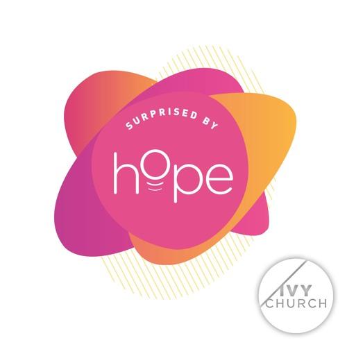 Surprised by Hope! Series