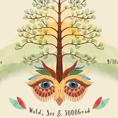 Armando Letico - 3000Grad Festival 3019 - RummelPlatz