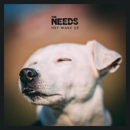 The Needs - Hey Wake Up