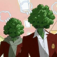 parsley (w/ adjacen7)