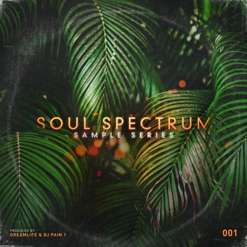 Soul Spectrum Vol 1 - Preview (Lo-Fi)